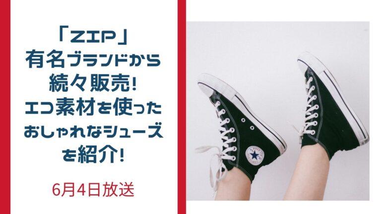 ZIP エコの靴